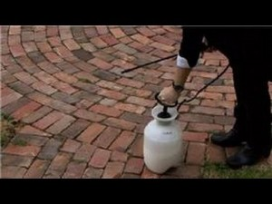 How to Get Rid of Mosquitoes on Patios