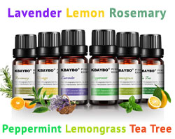 essential oil 6 pack starter fragrance set